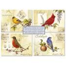 Birthday Song Birds Cards