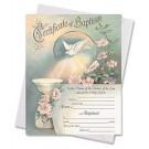 In One Spirit Baptism Certificate
